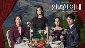 韓国ドラマ-完璧な妻